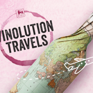 Vinolution Travels chez Delhaize