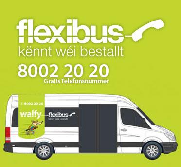 walfy-flexibus-banner